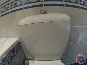 Fuites-Toilettes