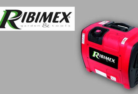 Ribimex-groupe-electro-mini
